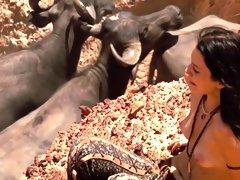 Paraisos Artificiais (2012) Nathalia Dill, Livia de Bueno
